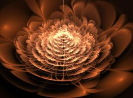 Fractal flower by Marikobard