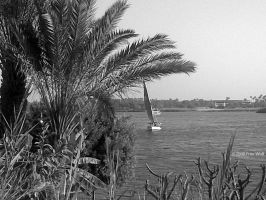 The Nile 06 -Black and White- by thefreewolf