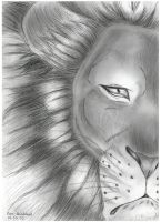 The Eye Of The Lion by Lion-Neverkilled