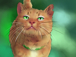 A red cat by TheKnivesLover