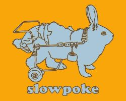 slowpoke by cova