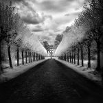 Castle Avenue infrared by MichiLauke