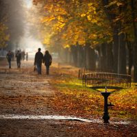 Cluj in the autumn light I by adypetrisor