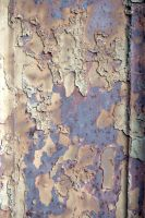 Rust Texture 1 by dead-stock