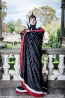 The Evil Queen by MaddMorgana
