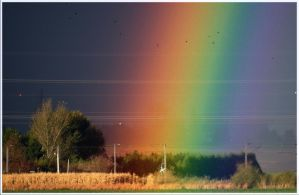 In the rainbow by chtijerome