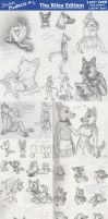 Scan Madness1: Riley 2007-2008 by CanineHybrid
