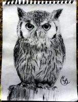 Owl (Buho) by MonikaTDG