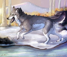 Winter by Akadafeathers