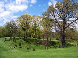 Bridgeview Golf Course by pepsipepsibaby