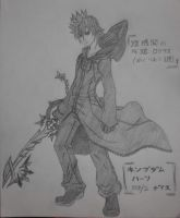 Roxas of Org XIII by unknown3173