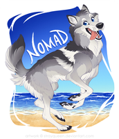 Nomad by StrayQueen