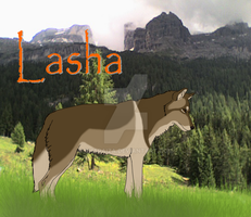 Lasha ref sheet by Sharaiza