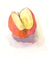 Study of an apple by stanuga