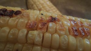 Charcoal-Grilled Corn on the Cob by crotafang