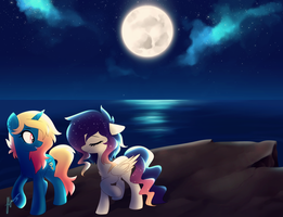 Moonlight Walk by Picklesquidly
