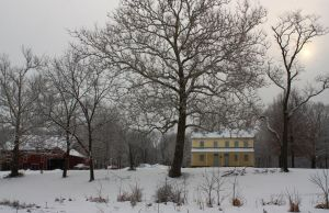 Home in Winter by arkansawyer