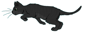 ThunderClan - Leopardfoot by WildpathOfShadowClan
