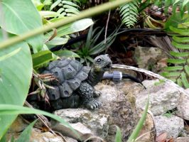 Water Spout Turtle by KitsuneOfCuriosity