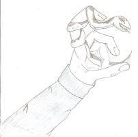 Snake in hand by QweXTheXEccentric