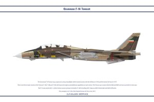 F-14A Iran 1 by WS-Clave