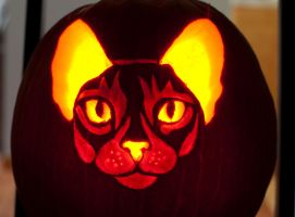 Abyssinian Cat Carving by AEisnor