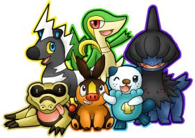 Black and White Pokemon Team