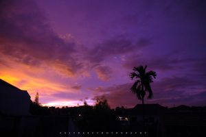 Sunset on top of the Roof 3 by agie