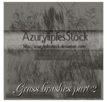 Grass brushes part 2 by AzurylipfesStock