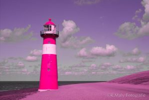 Color IR by TLO-Photography