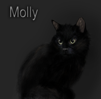 Molly by Rans-green-moon