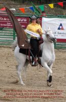 Rodeo 13-14 by AstriexEquineStock