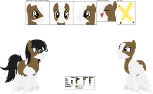 (Ponysona) Nightly Doodle Reference Sheet by LR-Studios