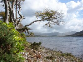 Kylemore Lough by T1sup