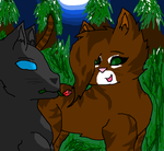 Leafpool and Crowfeather by pack-of-emeber12