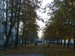 Autumn in Warsaw, 2009 by Andromeda-Mirtle