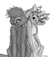 Graystripe and Millie by WildflowerTheWarrior