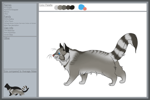 Graypaw by Aveah