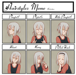 Hairstyle Meme II by Kumkrum