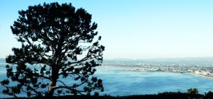 Above the Bay 1 by spudink