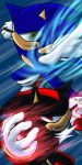 Sonic and Shadow: Two forces by maruringo