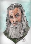 Pop portraits: Gandalf by brodiehbrockie