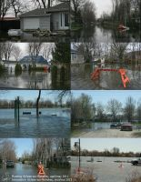Flooding montage by CaroRichard