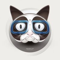 Grumpy Cat by dualform