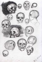 Skull incomplete by Thevakien