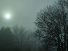 FOGGY SUNRISE by PUBLIC-DOMAIN-PICS