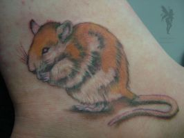 Rat Tat by Faereality