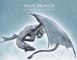 E-S Snow Dragon by Elevit-Stock
