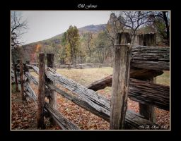 Old Fence by meross