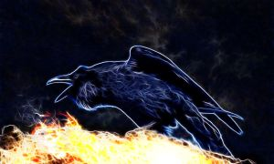 Raven On Top Of A Volcano by megaossa